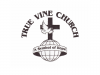 true_vine_church_logo_960-400